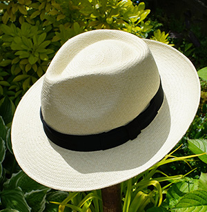 Panama & Summer Hats