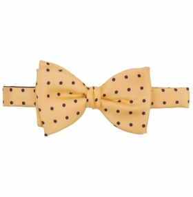 Fort & Stone Ready Tied Bow-Tie - Yellow Polkadot